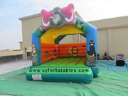 mini inflatable bouncer